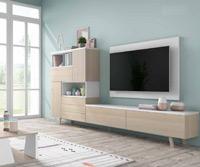 Moderno mueble de TV propuesta 45 - Moderno mueble de TV propuesta 45, fabricadas en DM y chapado en melamina con efecto natural o en terminaciones lacadas