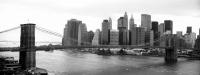 Colecci�n Ciudades New York
