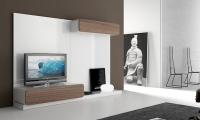 Composici�n salon modular 2