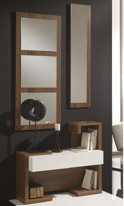 Juego recibidor y espejo 2 - Juego recibidor y espejos verticales