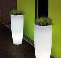 Maceteroslight Bambu  - Maceteroslight Bambu