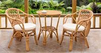 Dos modelos de sillas de rattan - Estructura duradera y de calidad