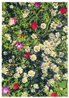 """Alfombra de la colección Kaleidoscope """"Botanic""""  - Alfombra de la colección Kaleidoscope """"Botanic"""" diseño colorido antiestática , anti-sonido y anti-humedecimiento , cómoda y moderna combinación."""