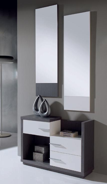 Recibidor espejo chapa madera vertical madrid malaga sevilla for Espejos para hall