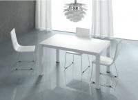 Mesa de comedor lacada y 4 sillas - Mesa de comedor y 4 sillas